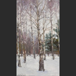 Birch in Kolomna